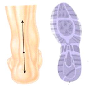 laufanalyse-linker-fuss